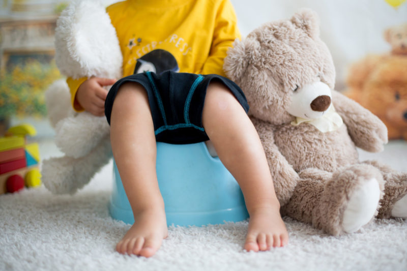 Boy sitting on potty with teddy bear next to him and and another in his hand
