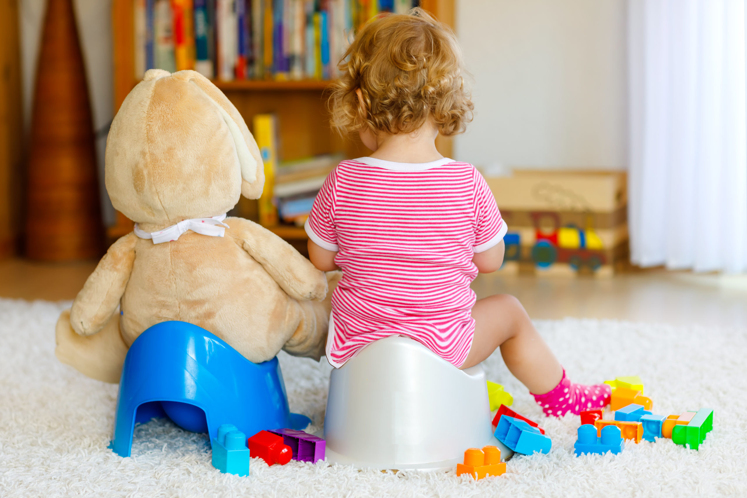 Closeup of cute little 12 month old toddler baby girl child sitting on potty with a teddy doing the same next to her