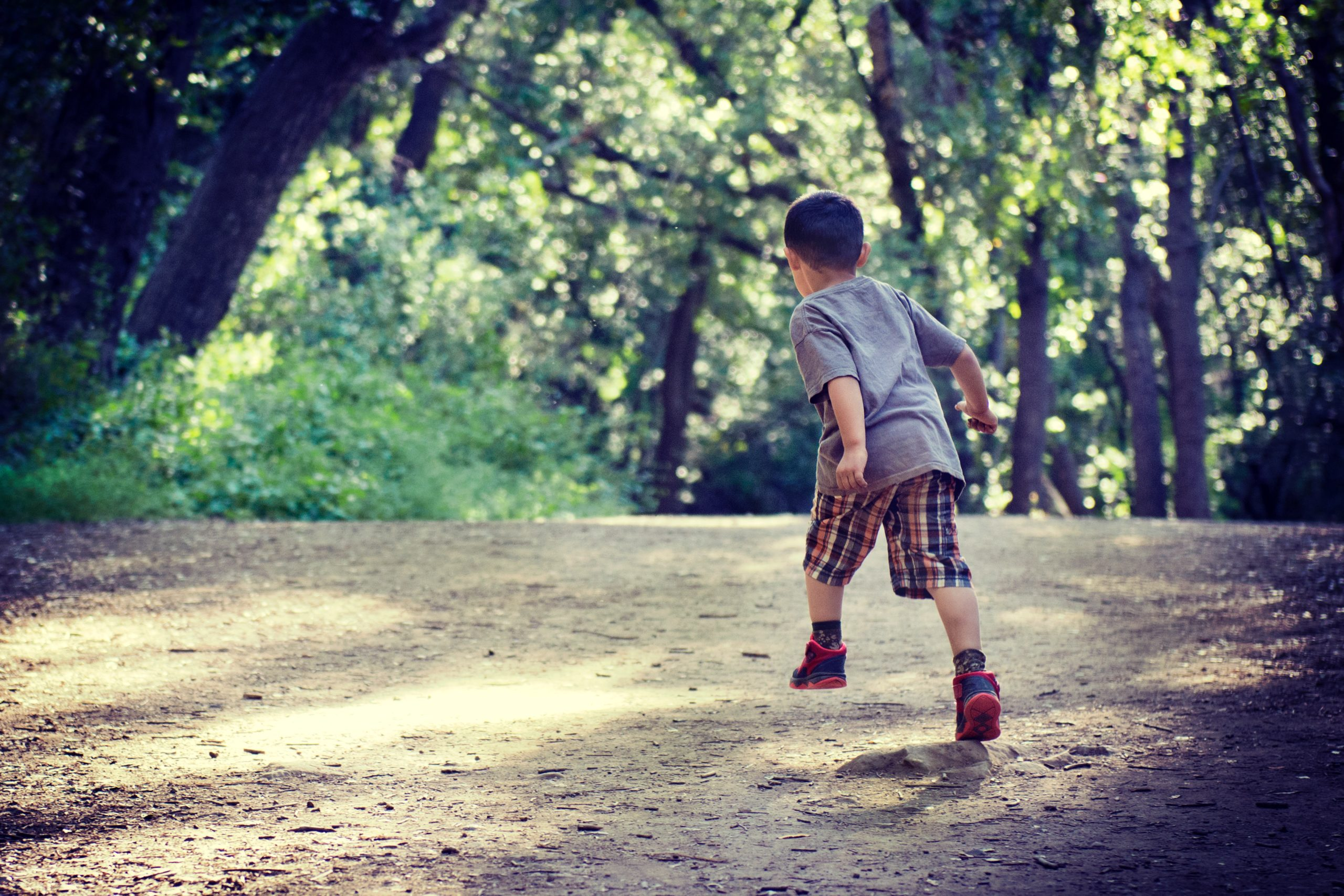 Family sports day: a child playing in the woods