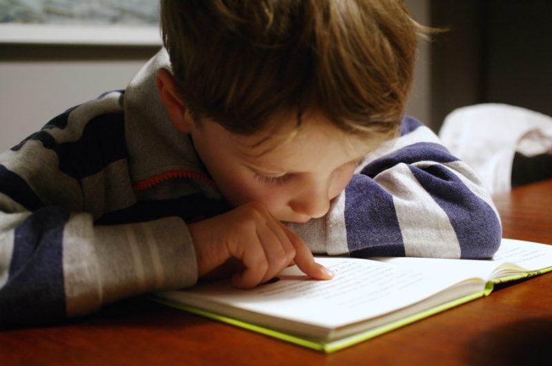 EHCP - boy reading